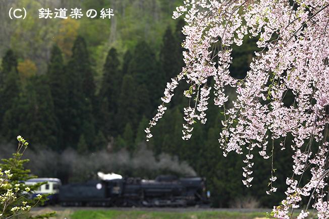 20110507上野尻5D2