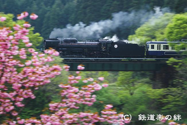 20110508咲花