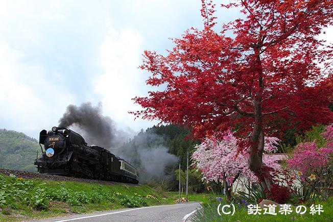 20110508津川015D2