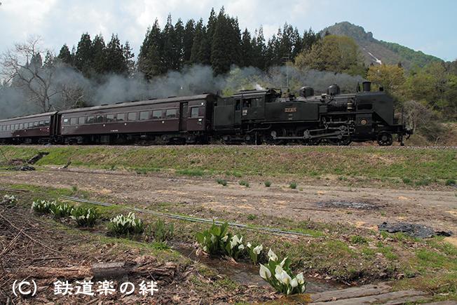 20110517会津蒲生