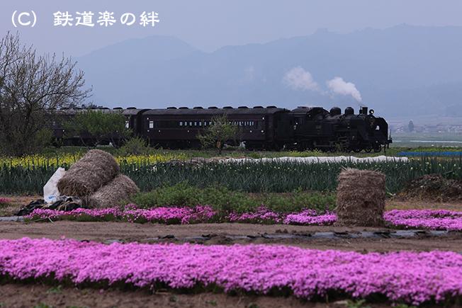 20110517根岸5D2
