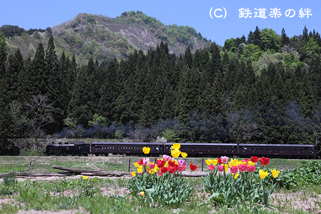 20110518会津大塩5D2