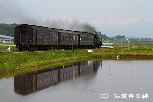 20110519根岸