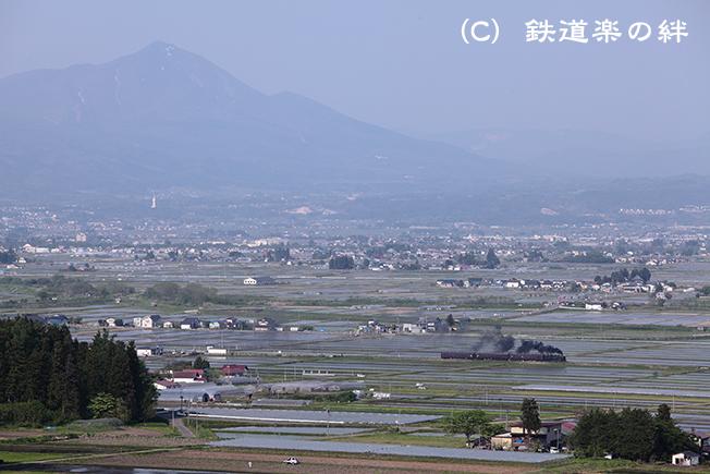 20110519根岸025D2