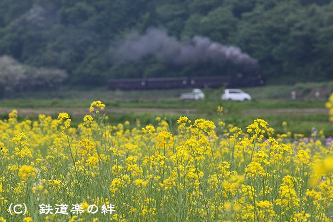 20110521会津柳津5D2