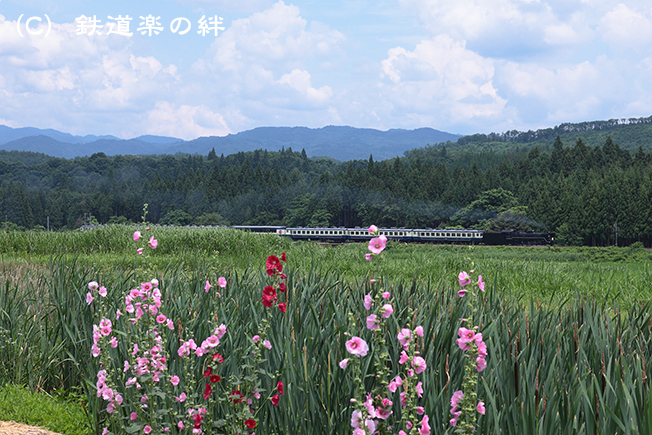 20110709上野尻5D2