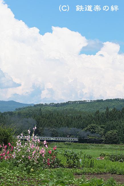 20110710上野尻5D2