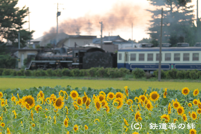 20110723猿和田