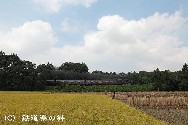 20110910折本015D2