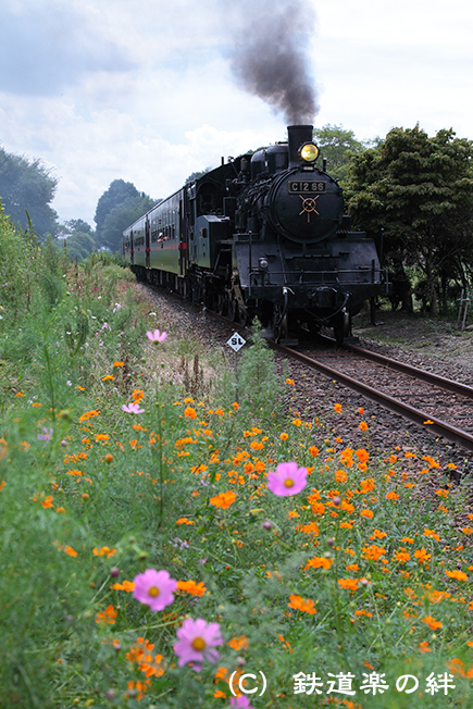 20110917多田羅5D2