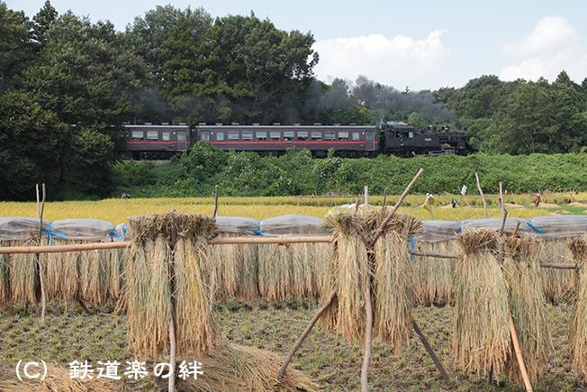 20110919折本5D2