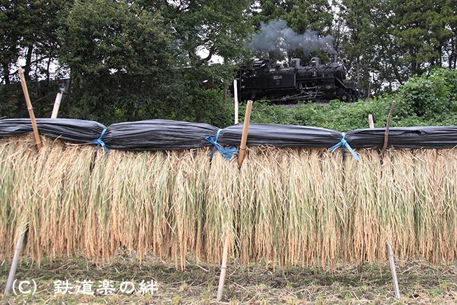 20111001折本015D2