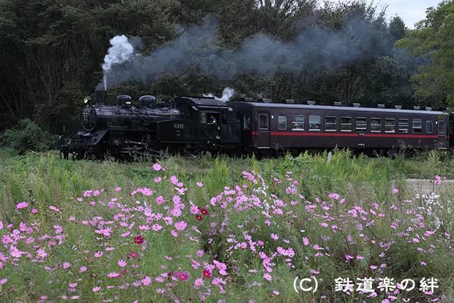 20111001多田羅5D2