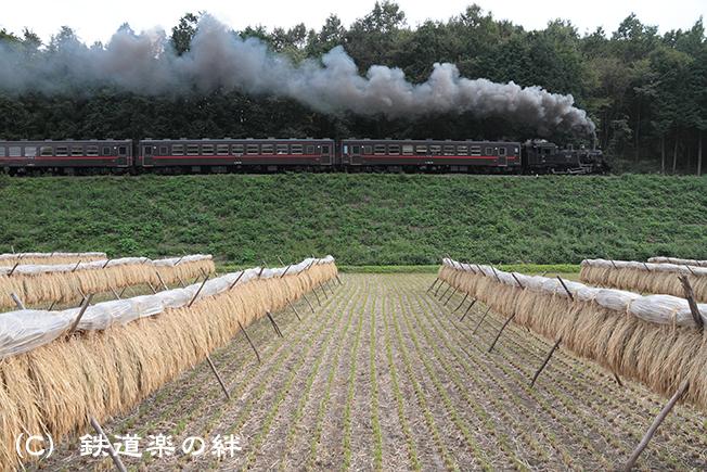 20111002天矢場