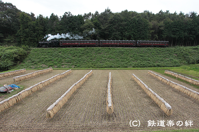 20111002天矢場015D2