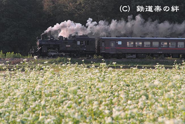 20111008真岡03