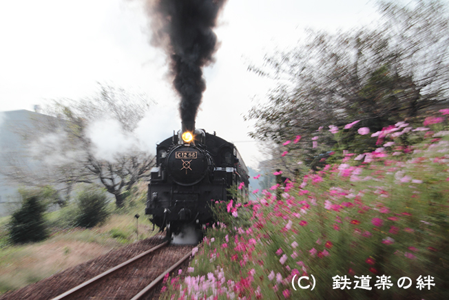 20111010寺内01