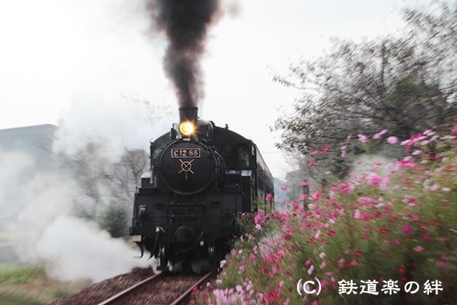 20111010寺内03