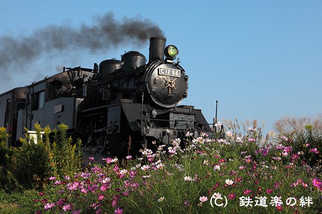 20111010北真岡5D2