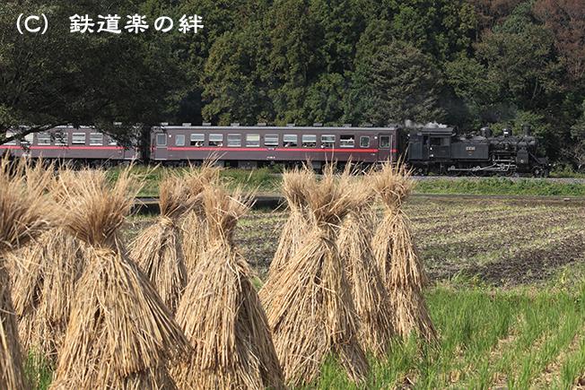 20111016真岡025D2