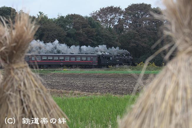20111023真岡015D2