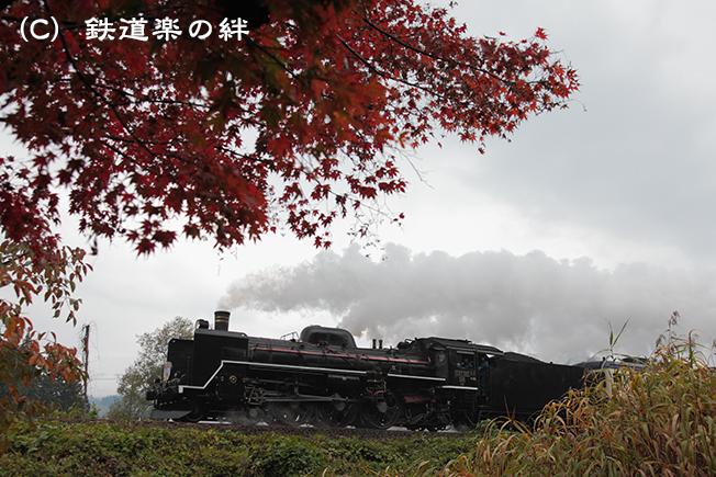 20111103津川015D2