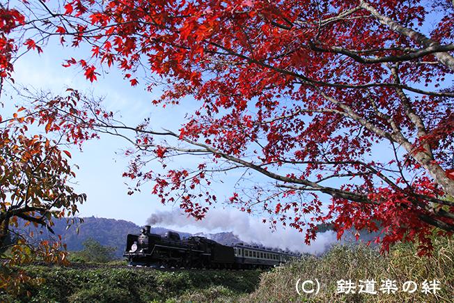 20111105津川5D2
