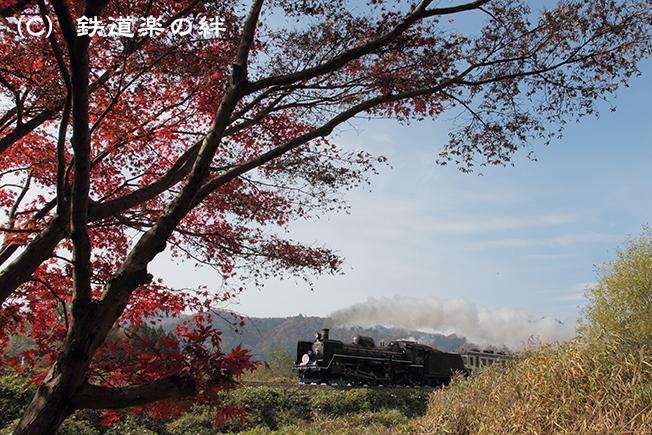 20111105津川