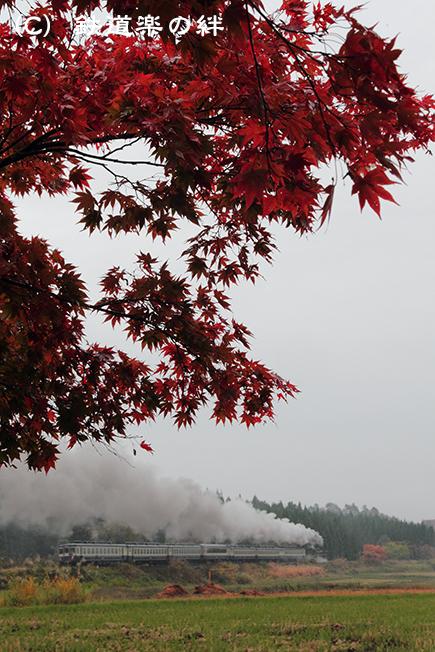 20111106上野尻