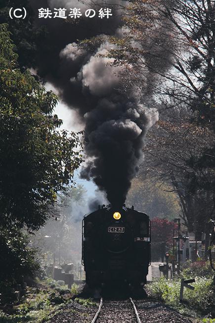20111109多田羅01
