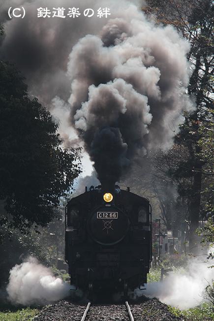 20111109多田羅03