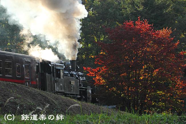 20111109天矢場02