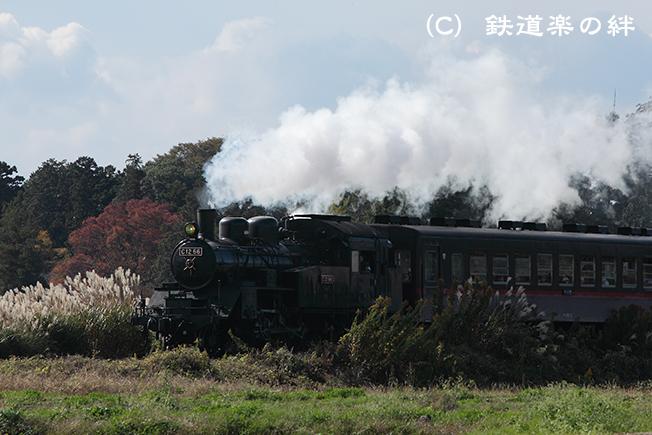 20111109北真岡015D2