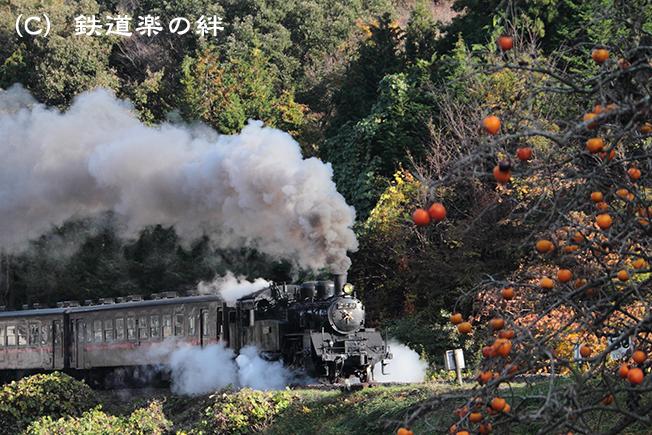 20111109天矢場01