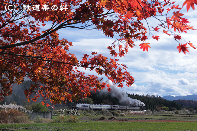 20111112上野尻015D2