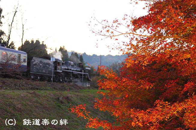 20111112上野尻025D2