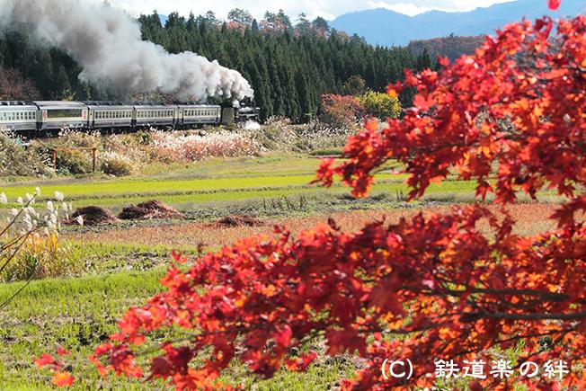 20111112上野尻