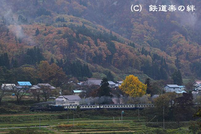 20111113尾登015D2
