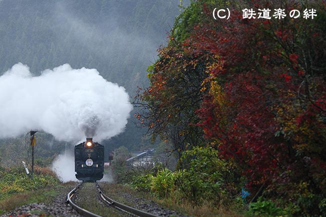 20111113津川025D2