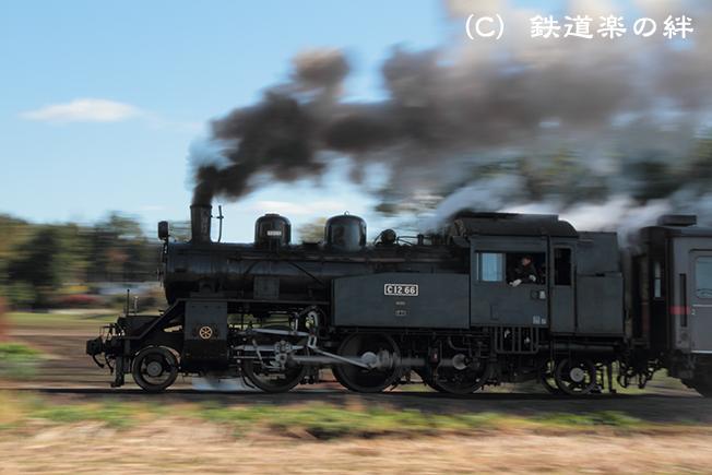 20111116多田羅02