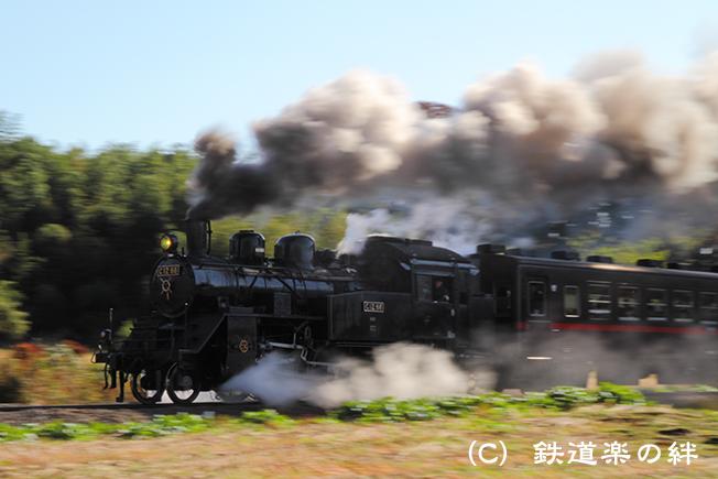20111116多田羅01