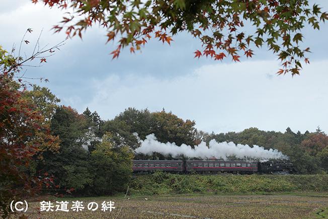 20111120折本5D2