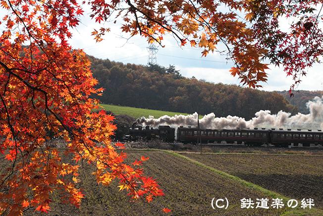 20111123笹原田5D2
