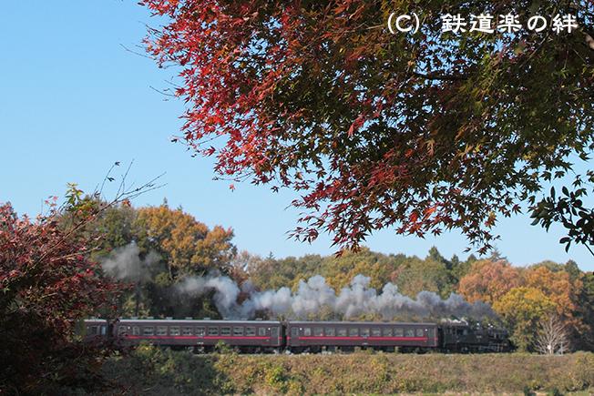 20111123折本5D2