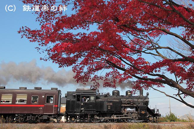20111123北真岡015D2