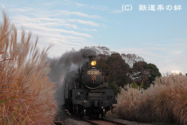 20111123北真岡025D2