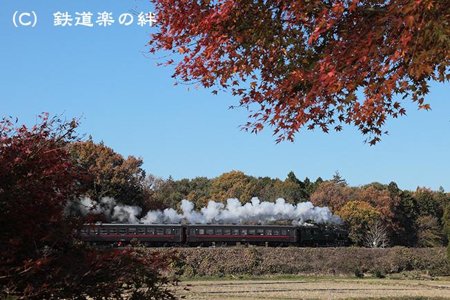 20111126折本5D2
