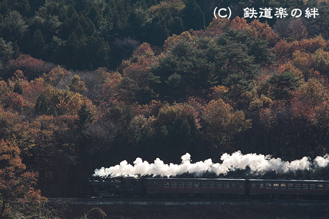 20111126多田羅5D2