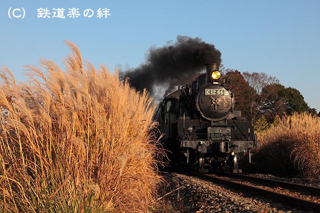 20111126北真岡5D2
