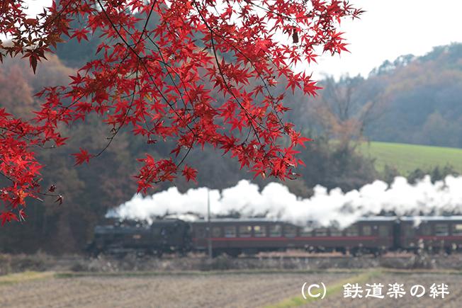 20111127笹原田5D2